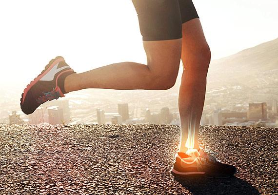 Fisioterapia - Run4You.mx